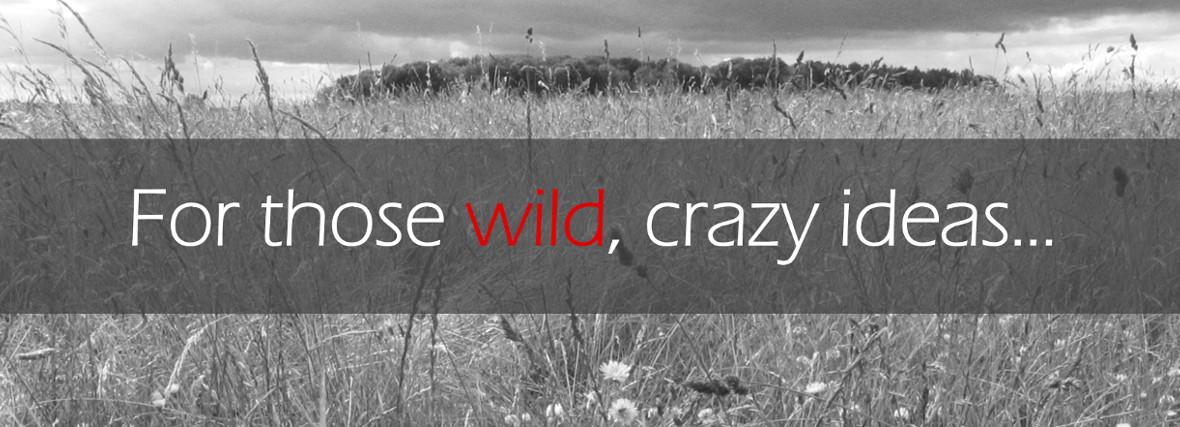 Verballistics helps with those wild, crazy marketing ideas